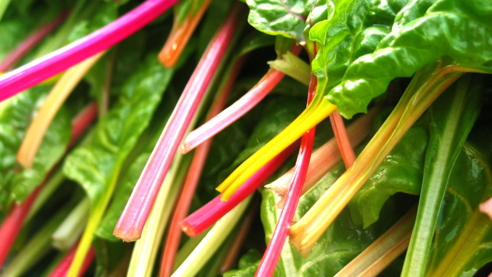 Verdure verdi condite alla perfezione—or killer rainbow chard!