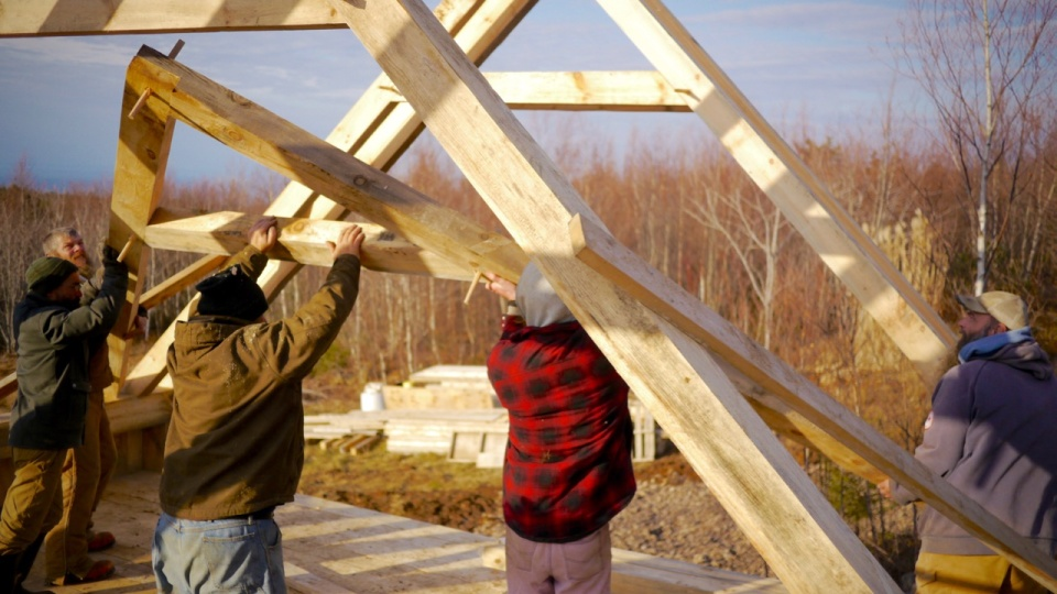Building our timber-frame barn