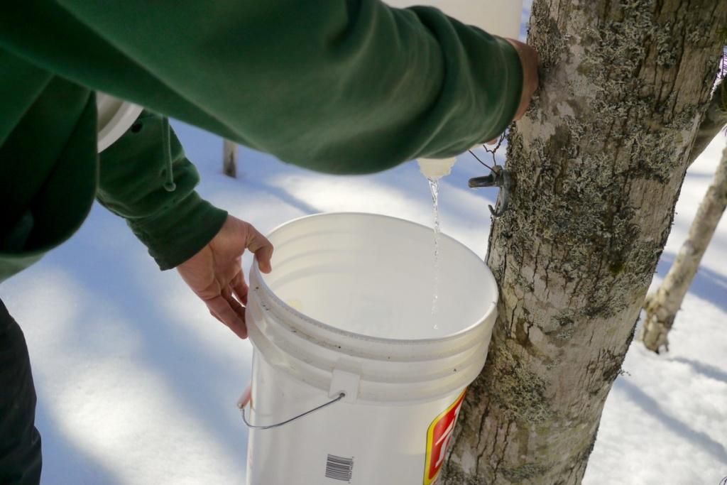Emptying jugs into buckets