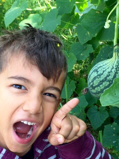 Noam excited by melons