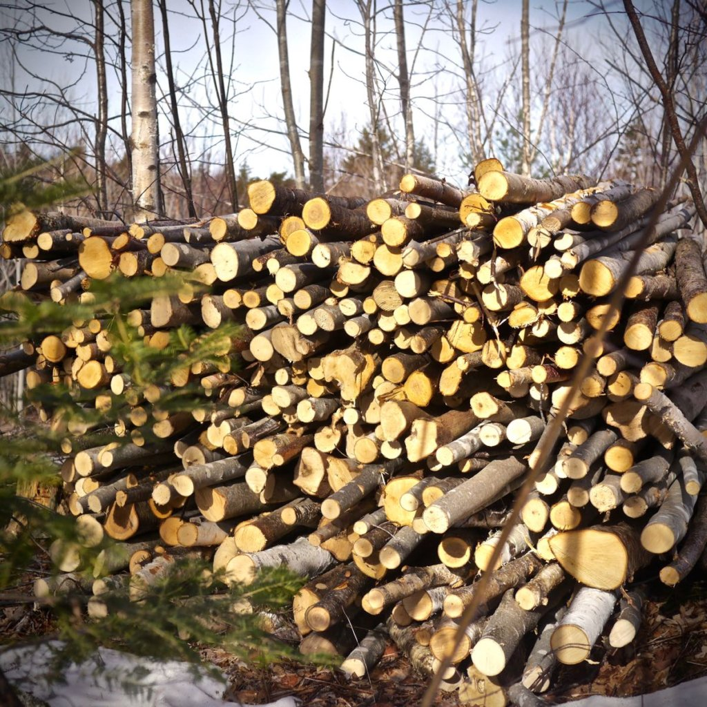 An's firewood is really piling up