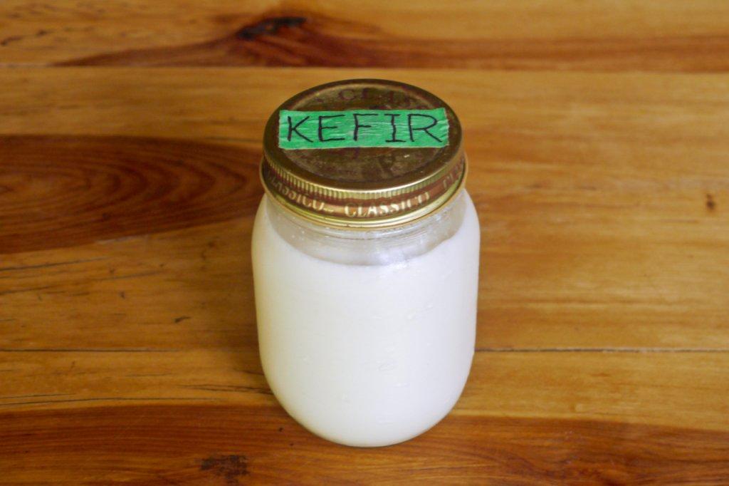 Microbial culture: kefir