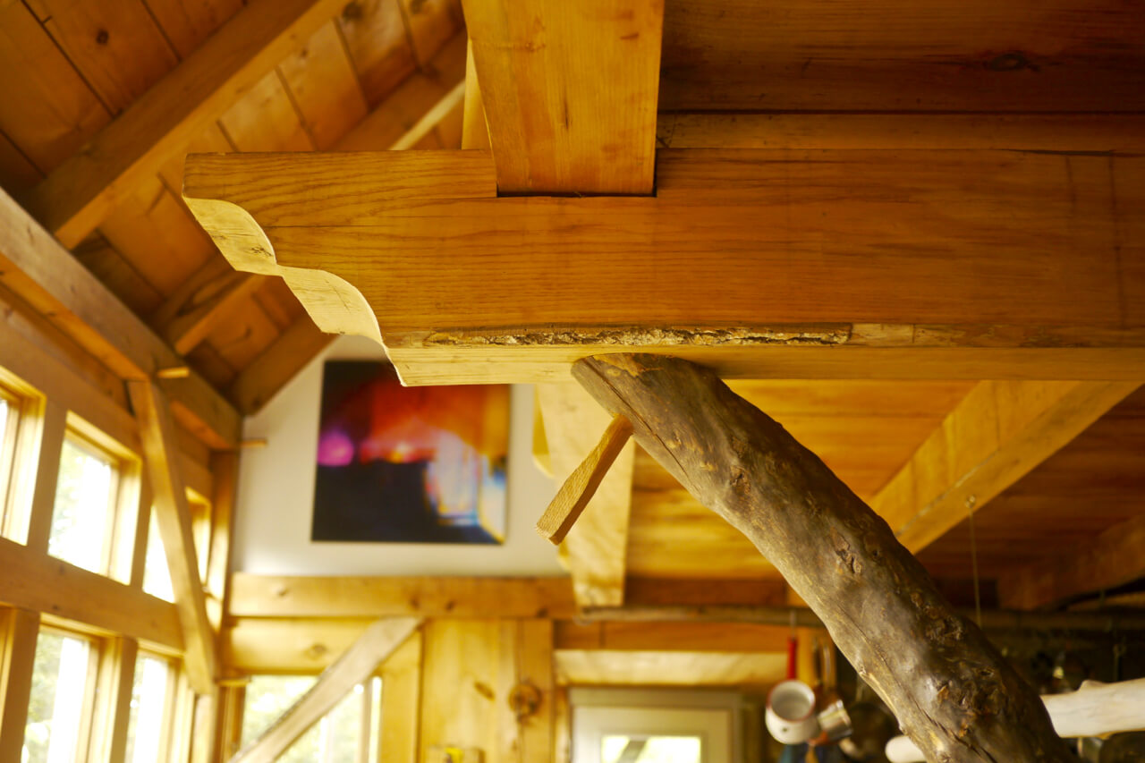 Natural elements incorporated into timber-frame design